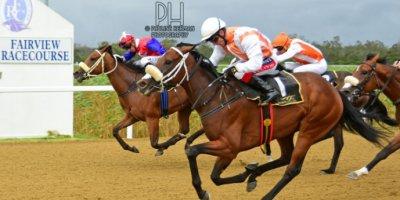 R7 Alan Greeff Greg Cheyne Luna Wish-Fairview Racecourse-7 FEB 2020-1-PHP_2682