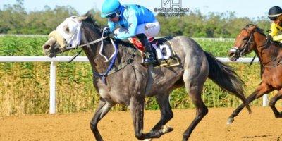 R8 Gavin Smith Marco van Rensburg Viva Le Bleu-Fairview Racecourse-11 FEB 2020-1-PHP_3855