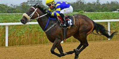 R8 Gavin Smith Marco van Rensburg Wild Move-Fairview Racecourse-7 FEB 2020-1-PHP_2746