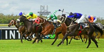 R9 Gavin Smith Stallone Naaidoo Alaskan Fate-Fairview Racecourse-28 FEB 2020-1-PHP_6262