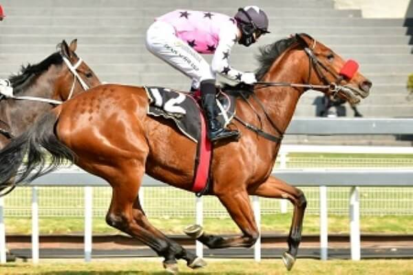 Athena to lead charge