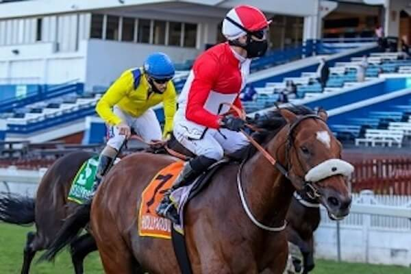 Entries for Gold Cup meeting